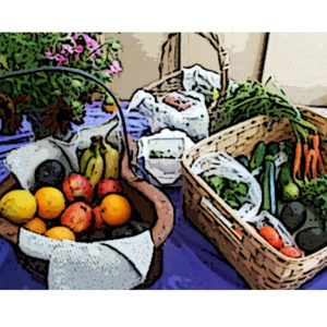 Seabreeze Farms Veggies Art